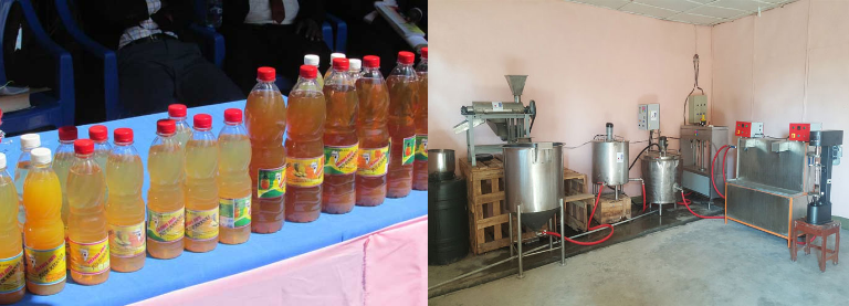 Fruit juice production