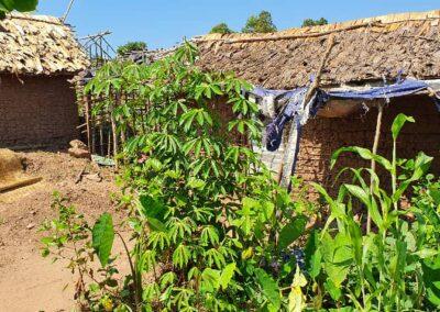 Pygmy Village