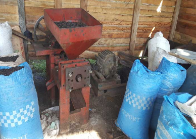 Palm nut pressing